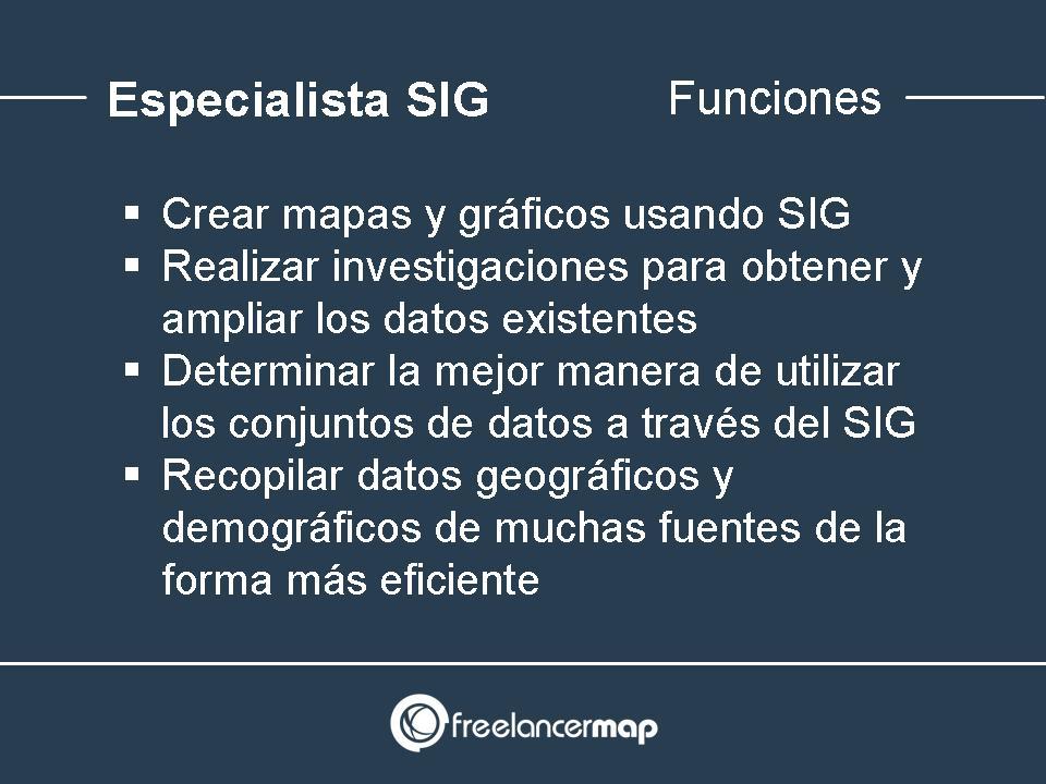 Funciones desarrollador SIG