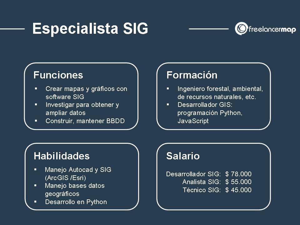 Radiografía del especialista SIG funciones formación habilidades y salarios