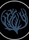 Profile picture by   Salesforce / Mulesoft development - Remote